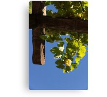 Harvest in the Sky - a Vertical View Canvas Print