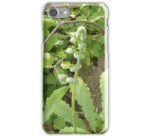 Fern Stem iPhone Case/Skin
