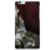 Down In The Woods iPhone Case/Skin