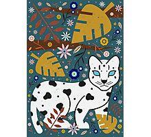 Snow Leopard Cub Photographic Print