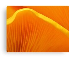 Golden Gills Canvas Print