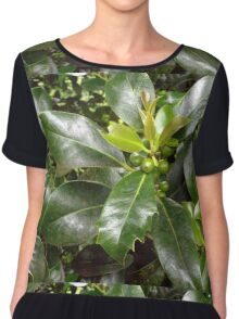 Holly Berries and Leaves Chiffon Top