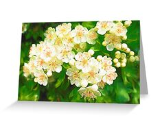 Bridal Wreath ( Abstract Painting ) Greeting Card
