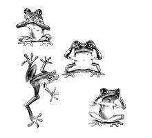 Fun Frogs See no evil, Speak no evil, Hear no evil Photographic Print