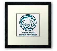 Cetacean Institute Framed Print