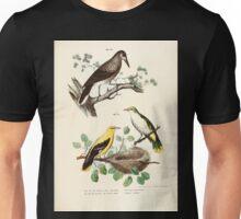 Bilder atlas zur Wissenschaftlich populären Naturgeschichte der Vögel in ihren sämmtlichen Hauptformen Leopold Joseph Fitzinger 1864 060 Unisex T-Shirt