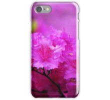 Azaleas in Keukenhof Botanical Garden. Netherlands iPhone Case/Skin