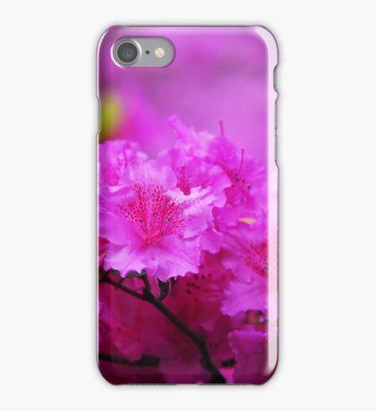 Azaleas in Keukenhof Botanical Garden. Netherlands iPhone Case/Skin