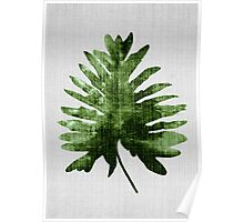 Tropical#6 - Tropical Palm Fern Poster