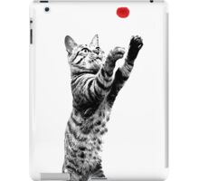Cat playing with red ball iPad Case/Skin