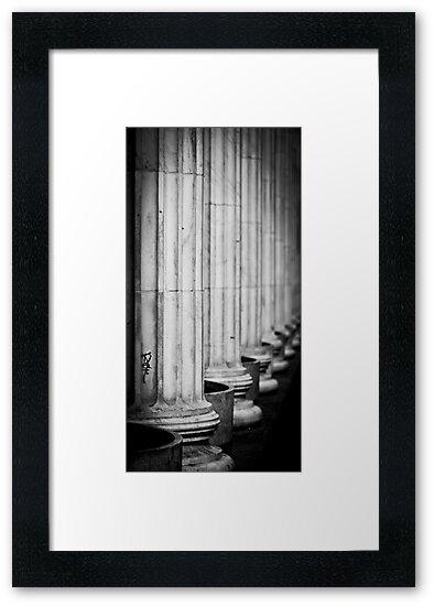 Columns by Jen Wahl