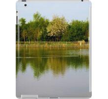 Reflection Landscape iPad Case/Skin