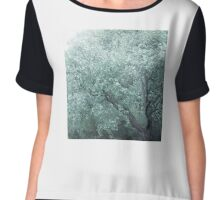 MONET TREE Chiffon Top