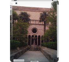 tranquil and calm  iPad Case/Skin