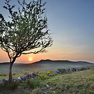 Cornwall: Sunset over Roughtor by Rob Parsons