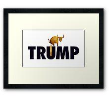 Donald J. Trump - Full of It. Framed Print