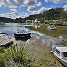 Cornwall: Low Tide at Lerryn by Rob Parsons