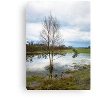 Reflections in the water Metal Print