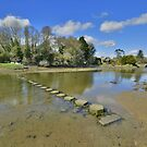 Cornwall: Steeping Stones at Lerryn by Rob Parsons
