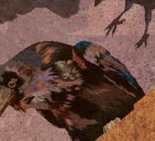 Grimey Crows Sticker