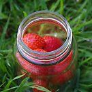Glass Jar with Strawberries by lezvee