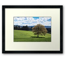 Beautiful Rolling Landscape  Framed Print