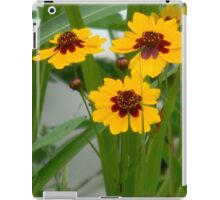 Plains Coreopsis With Buds iPad Case/Skin
