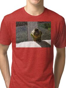 Shake, Rattle And Roll - Maroon-Bellied Conure NZ Tri-blend T-Shirt