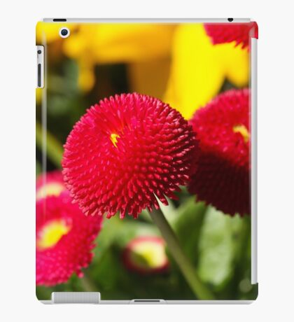 Red and filled cultivated daisies iPad Case/Skin