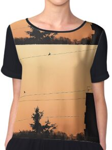 Birds on the wire Chiffon Top