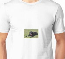 Black Lab laying with ball Unisex T-Shirt