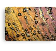Air bubbles in ice under the microscope Canvas Print