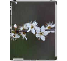 Flowers of a Blackthorn bush iPad Case/Skin