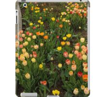 The Best Traffic Island in Town - Enjoying the Beauty of Spring iPad Case/Skin