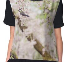Bird in the Cherry Blossoms Chiffon Top