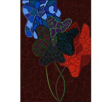 Abstract Blooms Photographic Print