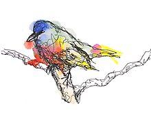 Bright Colorful Watercolor Bird Sketch  Photographic Print