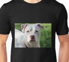 Young Pitbull Unisex T-Shirt