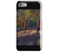 Evening Shadows iPhone Case/Skin