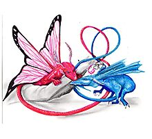 Pink and Blue dragons- Romeo and Juliette Photographic Print
