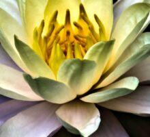 Golden Lotus Sticker