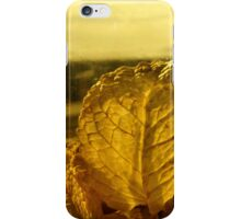 autumnal leaves iPhone Case/Skin