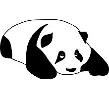 Sleepy Panda Photographic Print