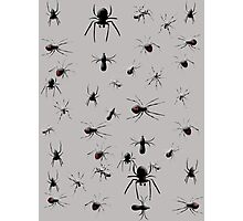 Creepy Spiders Pattern Photographic Print