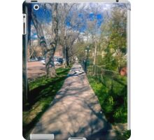 A Long Walk... iPad Case/Skin