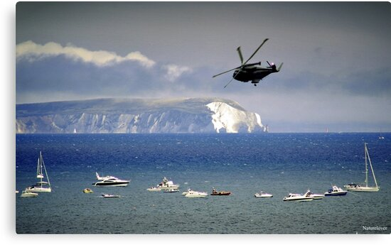 Chopper Over The Needles by naturelover