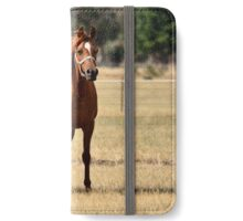 Mother and Foal iPhone Wallet/Case/Skin