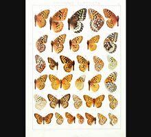 The Macrolepidoptera of the world a systematic account of all the known Butterflies Moths Adalbert Seitz V1 V3 1906 174 Argynnis Euptoieta Unisex T-Shirt