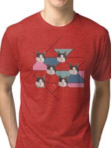 Kitten Issues  Tri-blend T-Shirt