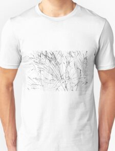 Feather Grass In Snow T-Shirt